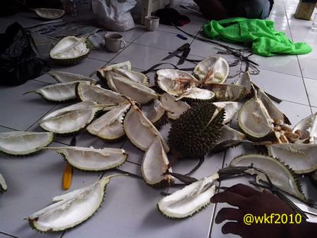para tamu11-durian